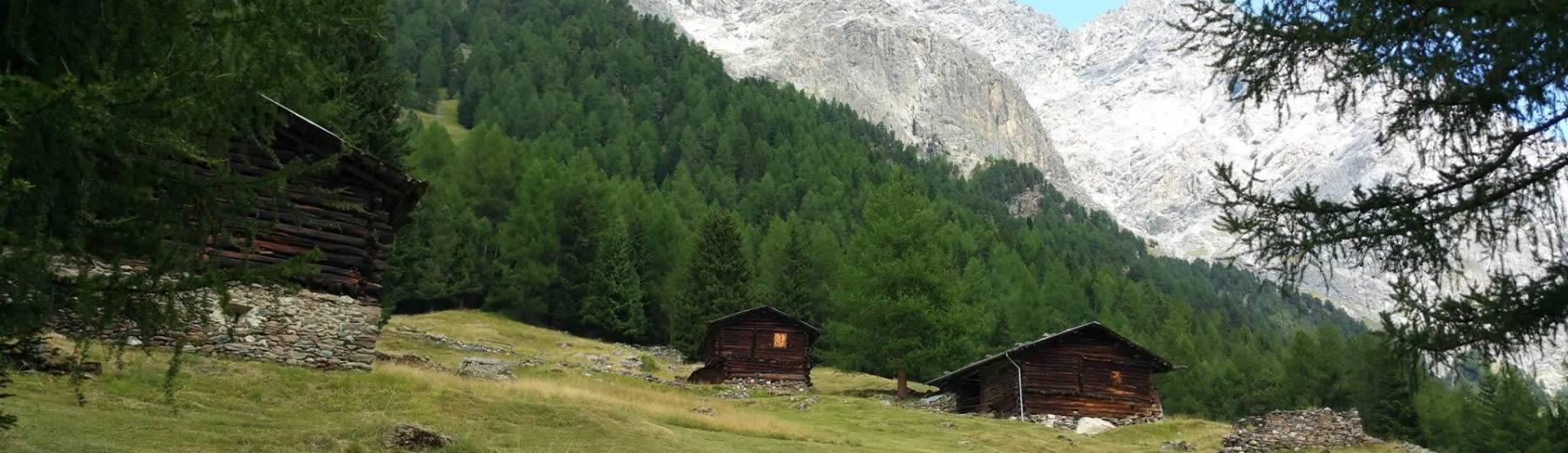 Soggiorni in Montagna, Pozza di Fassa   AriminumTravel